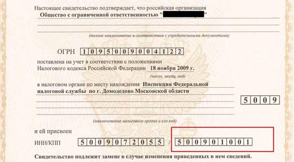 Так выглядит ИНН и КПП в свидетельстве о регистрации