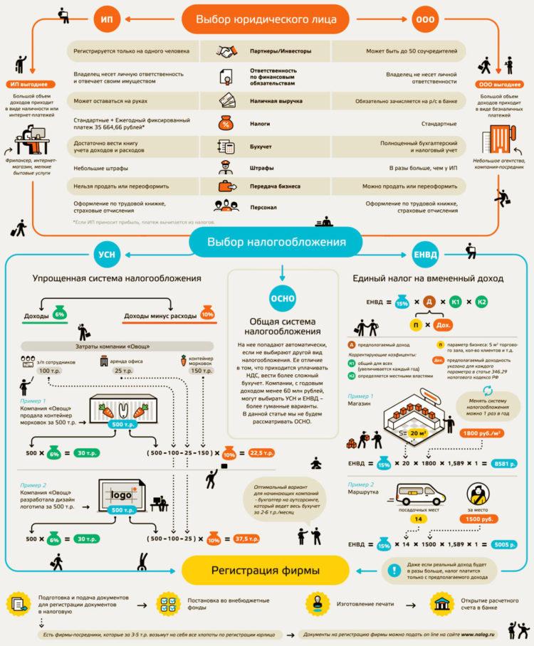 Сравнение ИП и юр. лица (ООО) - инфографика